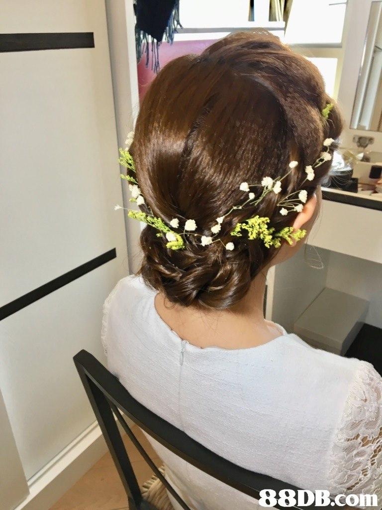 88DB.com  hair