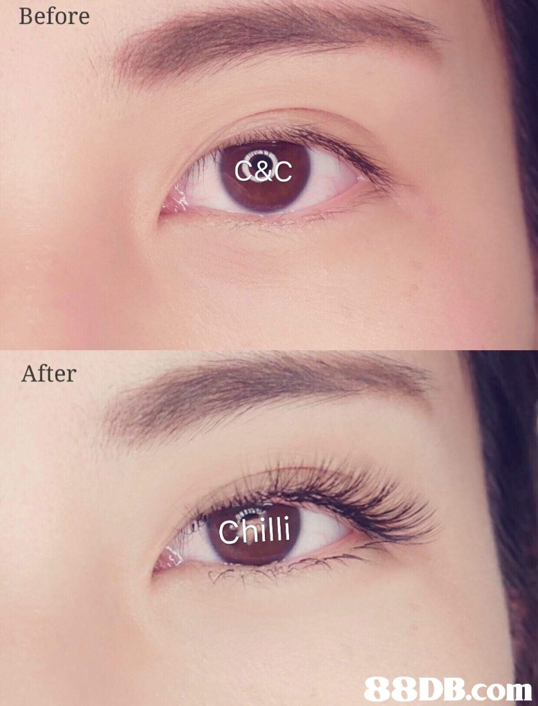 Before d&c After Chilli   eyebrow,eyelash,eye,beauty,close up