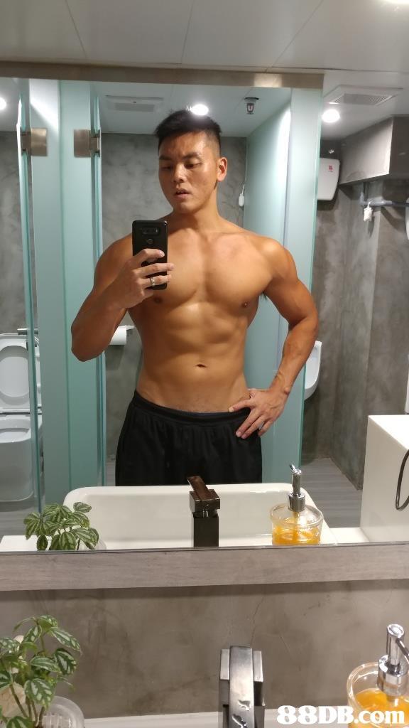 88DB.com  bodybuilder