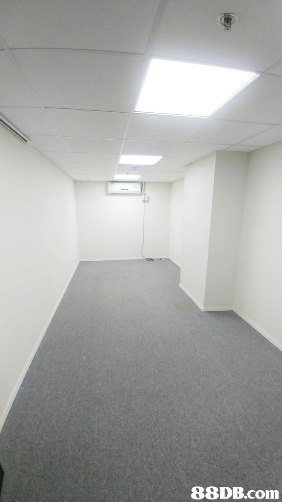 property,ceiling,floor,wall,daylighting