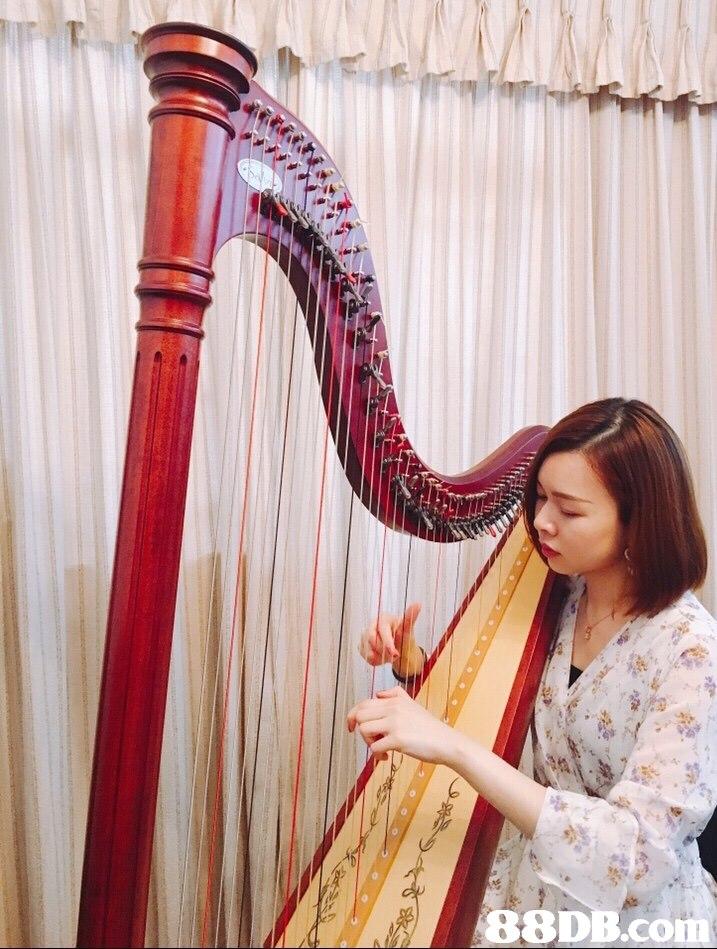 88DB.co  harp,clàrsach,konghou,musical instrument,string instrument