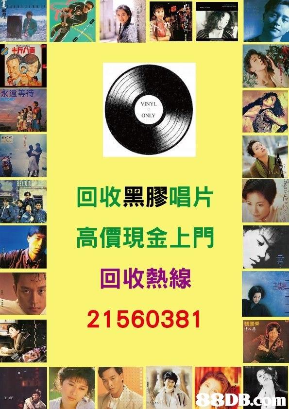 永遠等待 VINYL ONLY 回收黑膠唱片 高價現金上門 回收熱線 21560381 張國榮 BD 王傑  collage