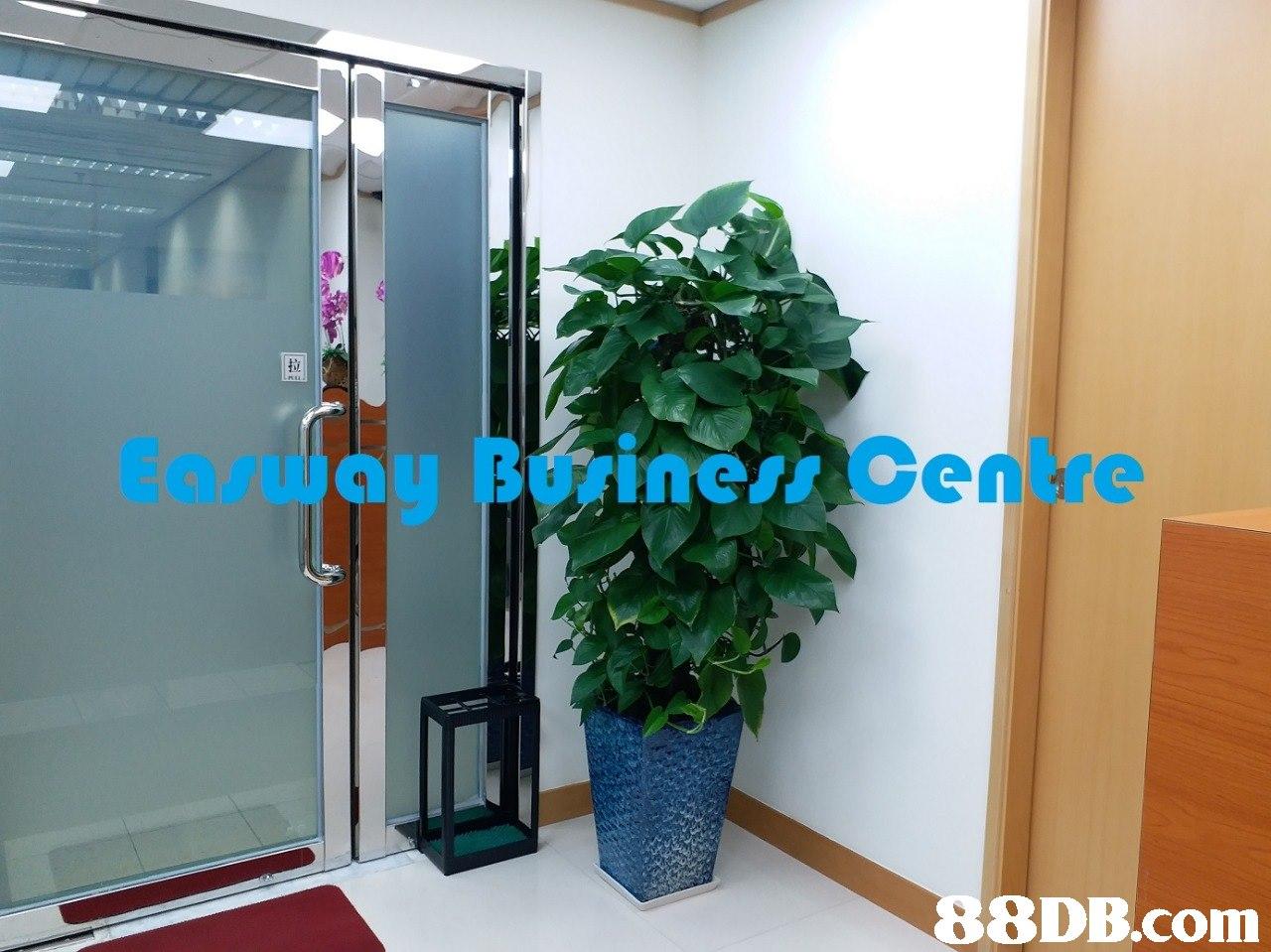 Easway Buriness Centre 8DB.com  glass
