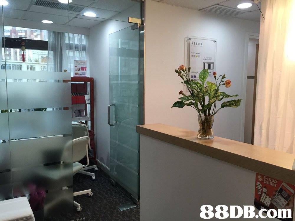 SESHA Dollar   Property,Room,Bathroom,Interior design,Building