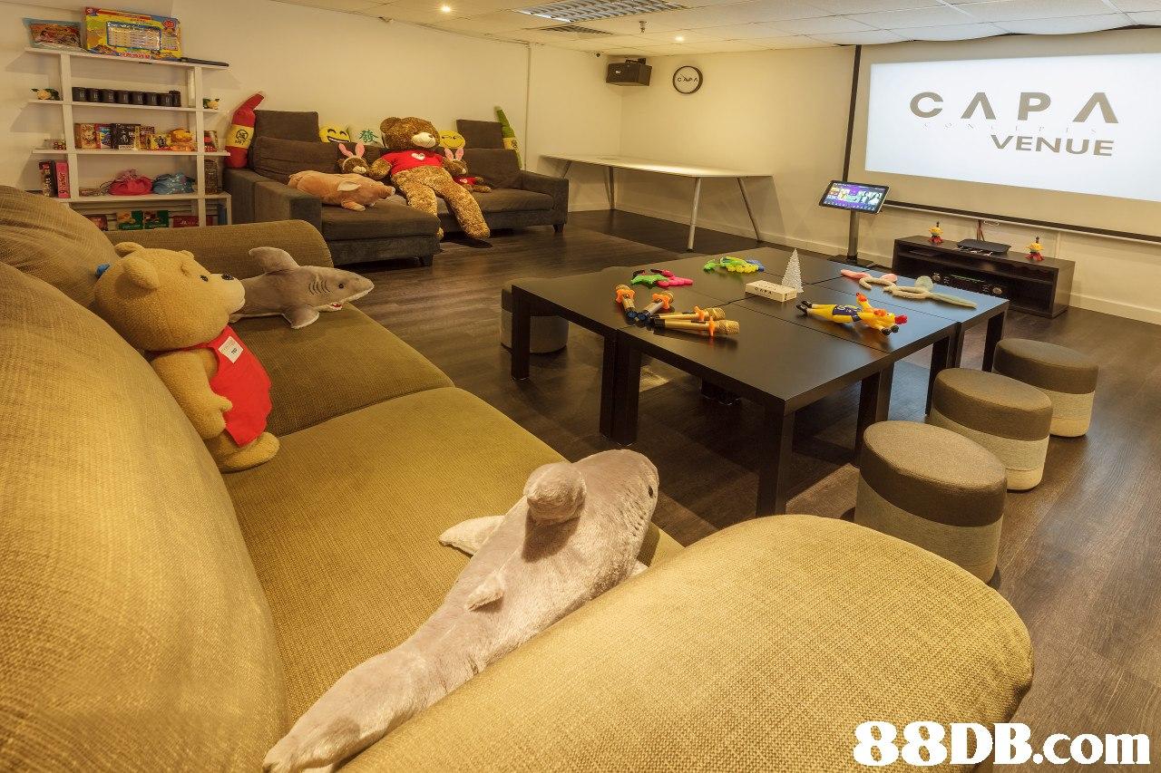 СЛРЛ VENUE   room,floor,flooring,interior design,home