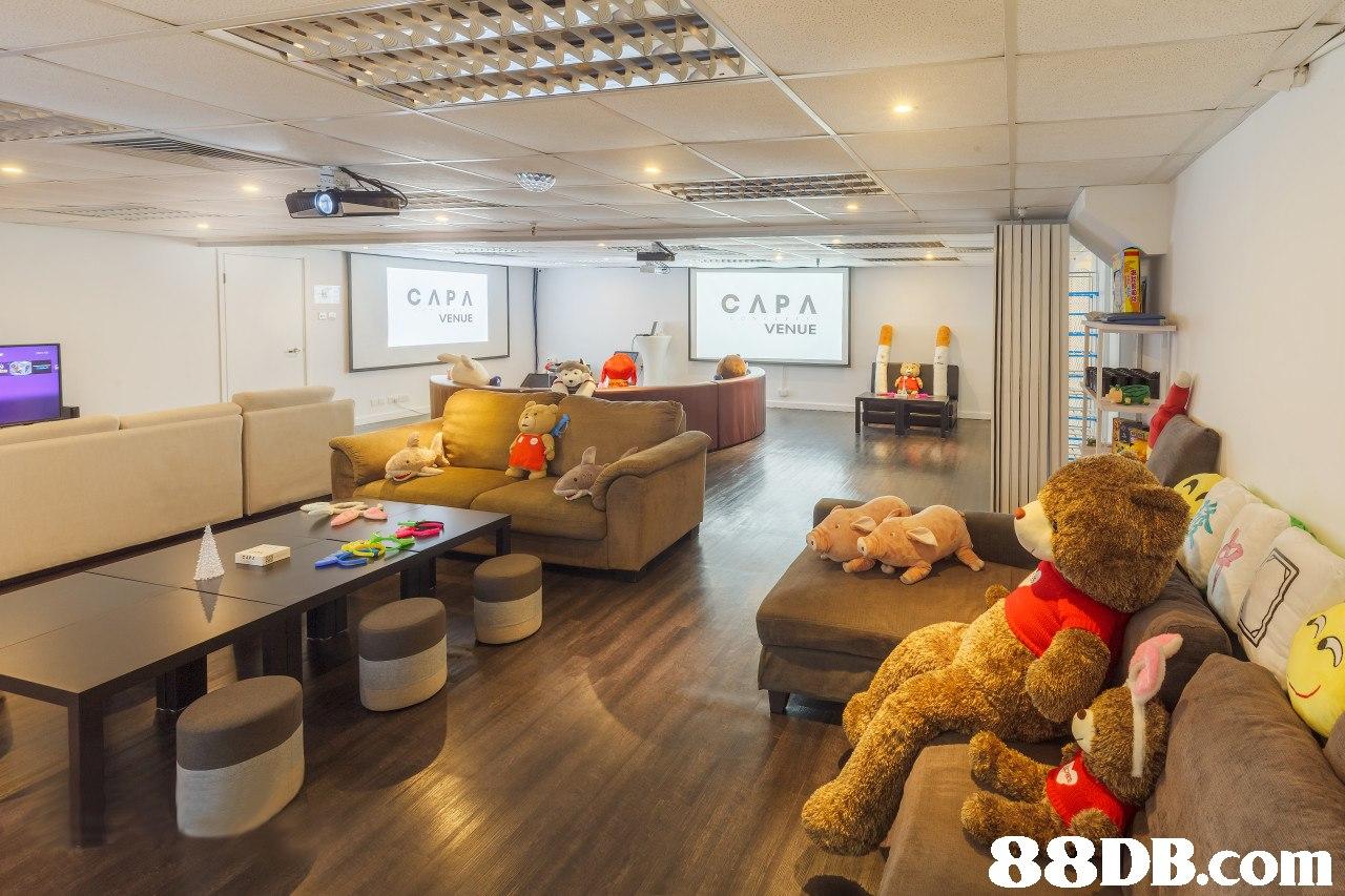 СЛРЛ VENUE VENUE   interior design,ceiling,real estate,
