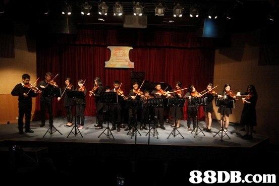 88DB.com  orchestra