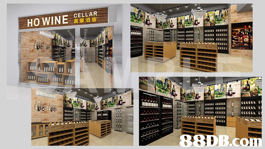 CELLAR 嘉豪酒窖   Product,Building,Interior design,Shelf,Furniture