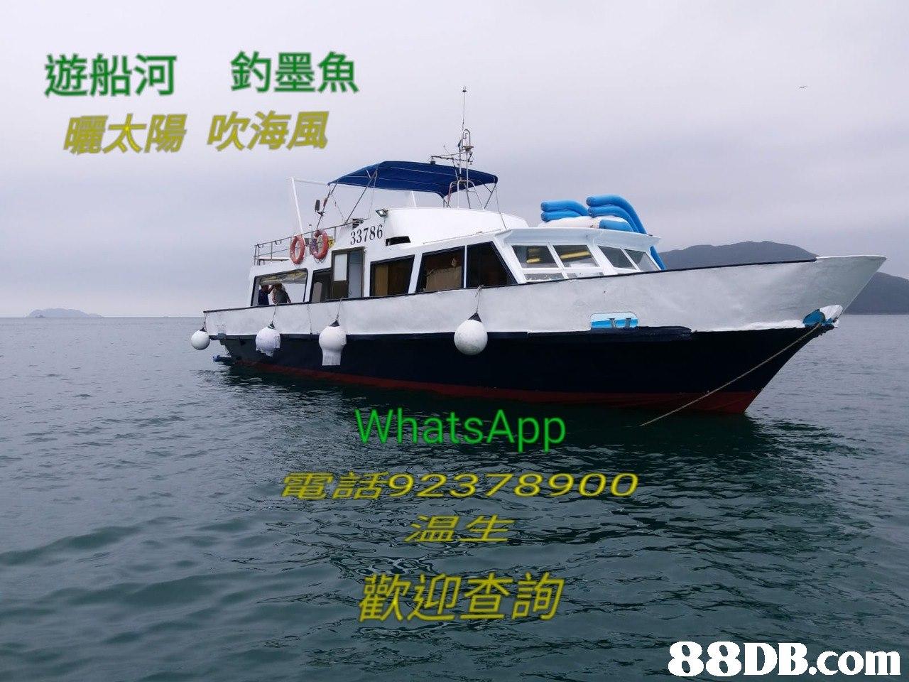 遊船河 釣墨魚 曬太陽吹海風 33786 WhatsApp 電言舌9 2 3 7 8 9 00 温生 歡迎 查詢   Vehicle,Water transportation,Boat,Yacht,Speedboat