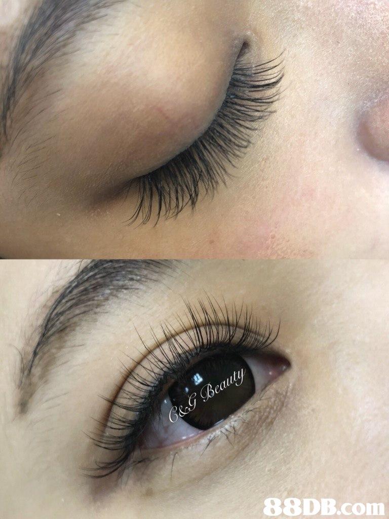 eyebrow,eyelash,eye shadow,eye,beauty