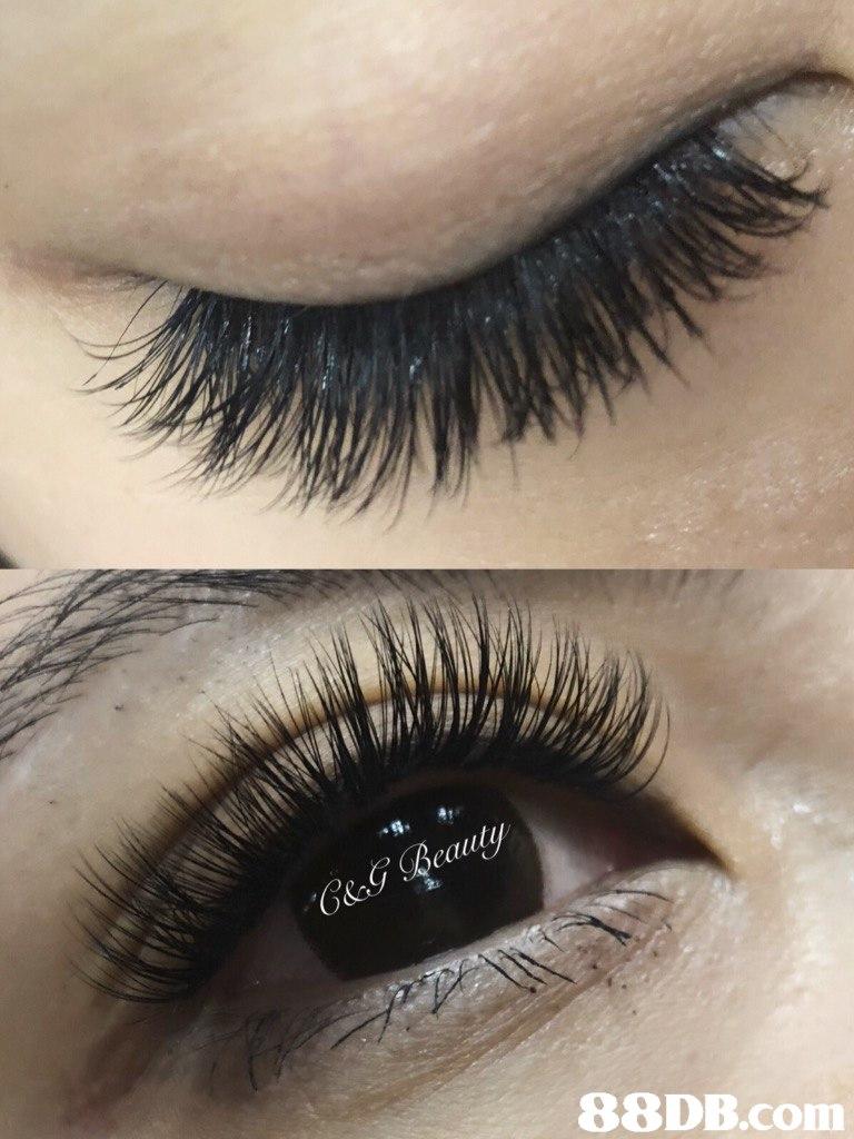 al   eyebrow,eyelash,beauty,eye,cosmetics