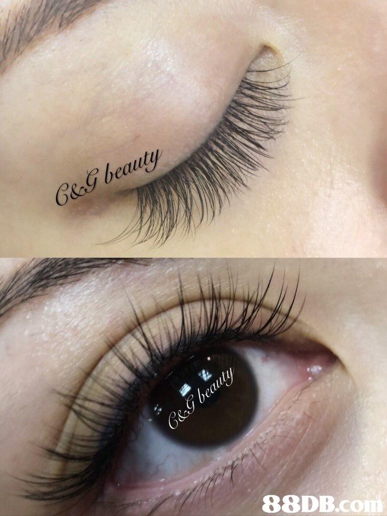 G&g beauty   eyebrow,eyelash,eye shadow,eye,close up