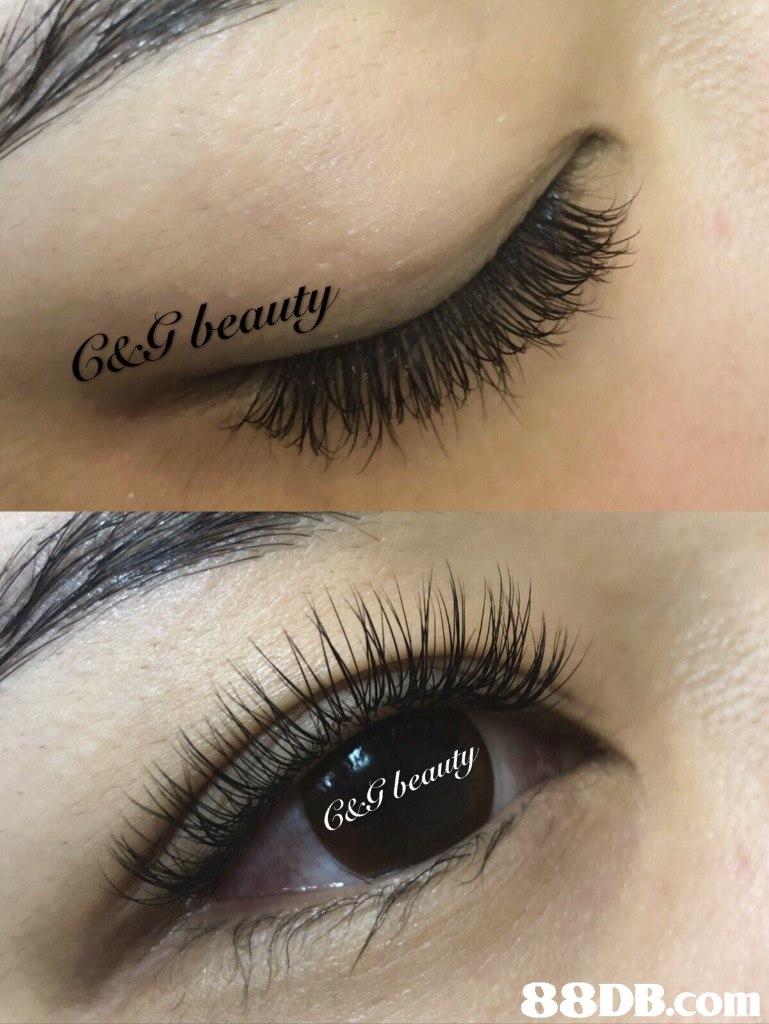 eg beauty G&G beauty   eyebrow,eyelash,eye,eye shadow,close up
