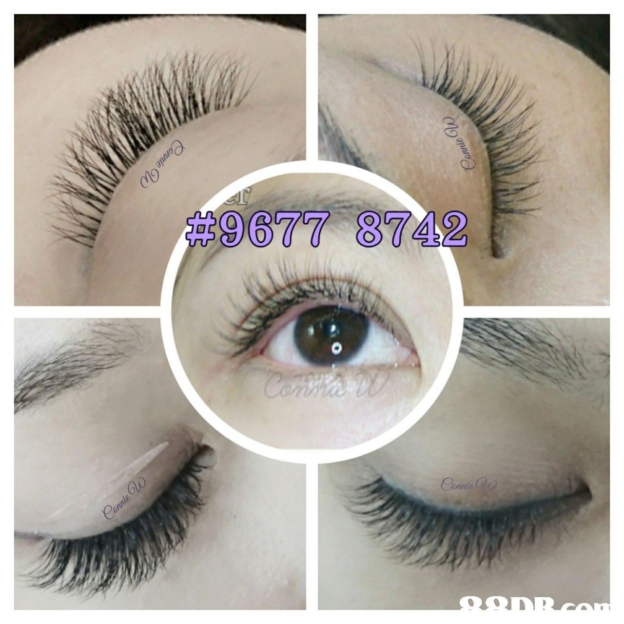 eyelash,eyebrow,eye,cosmetics,eyelash extensions