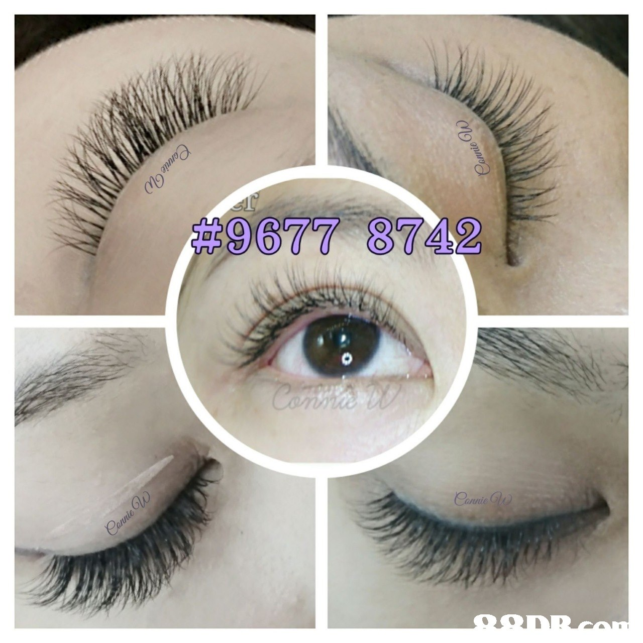 eyelash,eyebrow,eye,cosmetics,eyelash extensions