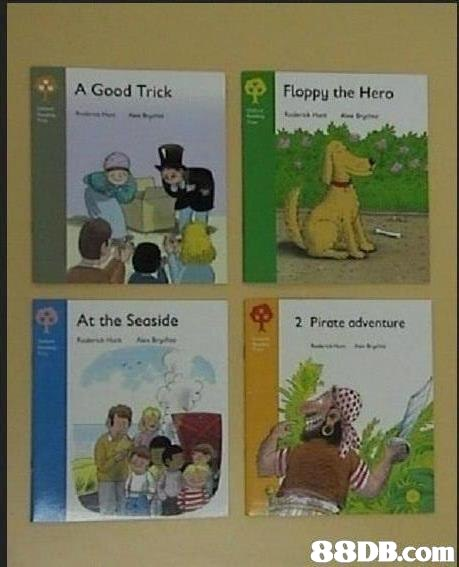 A Good Trick Floppy the Hero At the Seaside 2 Pirate adventure   text,book,fiction,organism,comics