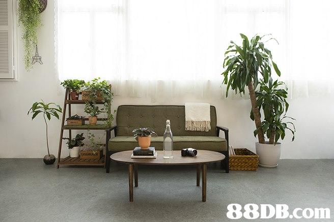 88DB.com  furniture