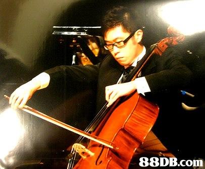 88DB.com  cello