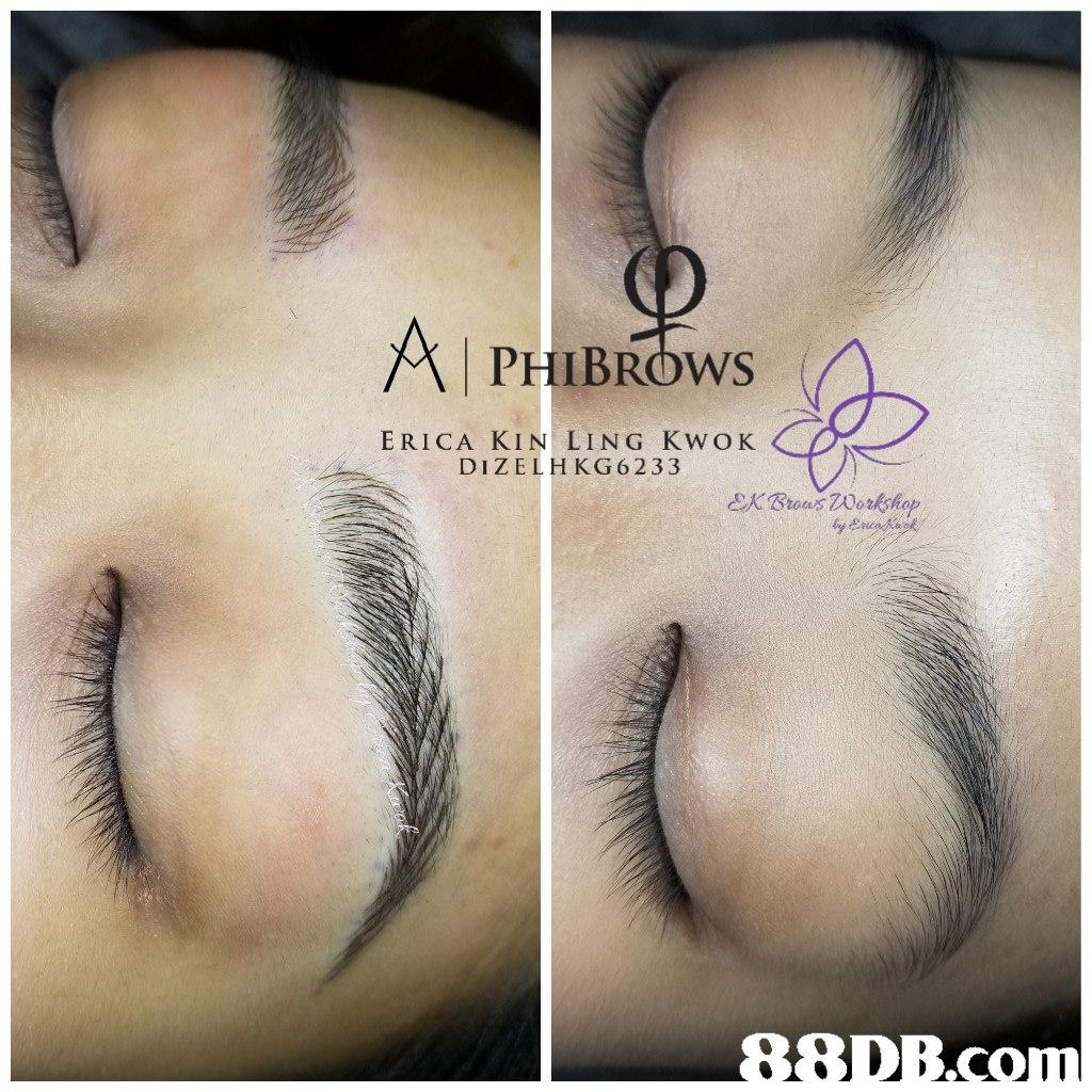 시 PHIBROws ERICA KIN LING KWOK DIZELH KG 6233  eyebrow,nose,eyelash,forehead,eye
