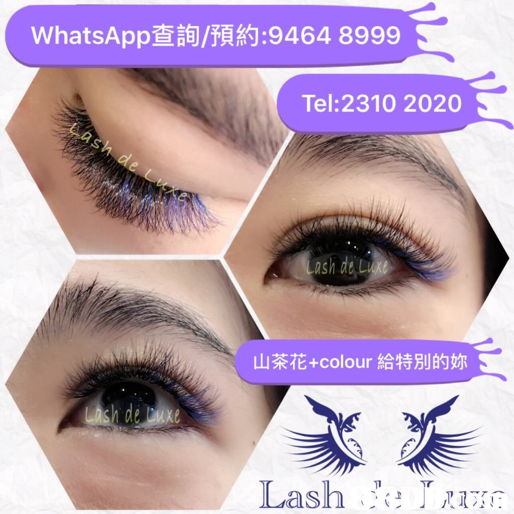 WhatsApp查詢/預約:9464 8999 Tel: 2310 2020 山茶花+colour給特別的妳  eyebrow,eyelash,purple,violet,cosmetics