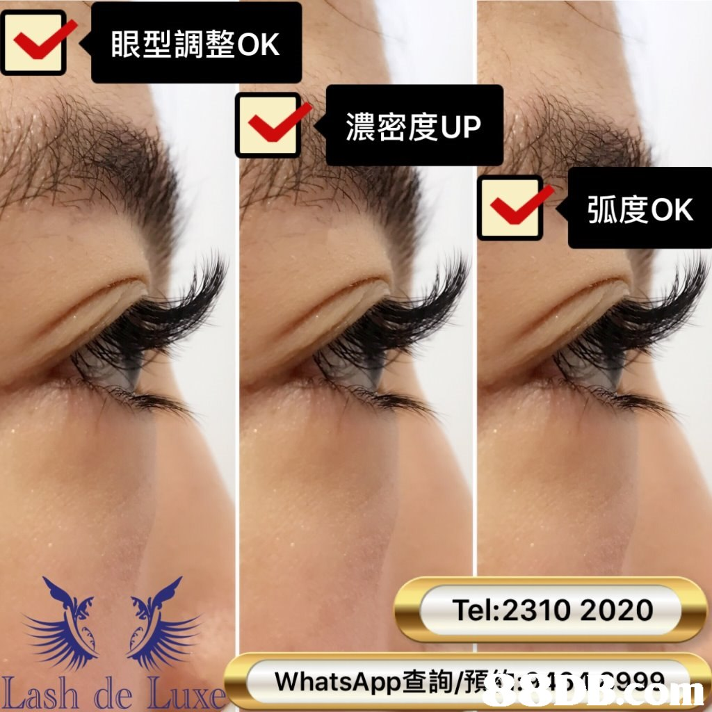 眼型調整OK 濃密度UP 弧度OK Tel: 2310 2020 Lash de Lux whatsApp查詢/預%;3131 7999 Ph  eyebrow,eyelash,nose,eye,forehead