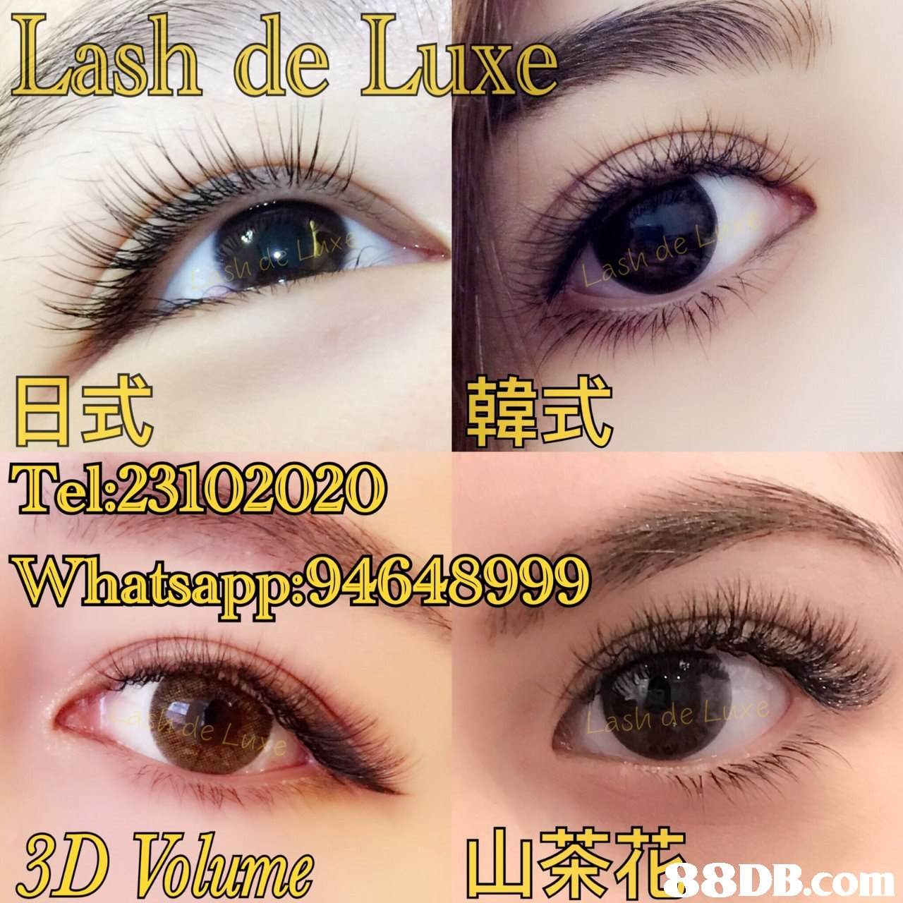 Lash de Luxe 日式 Tel:23102020 Whatsapp:94648999 韓式 sh de DVome1tB8DB.com  eyebrow,eyelash,eye,cosmetics,eyelash extensions