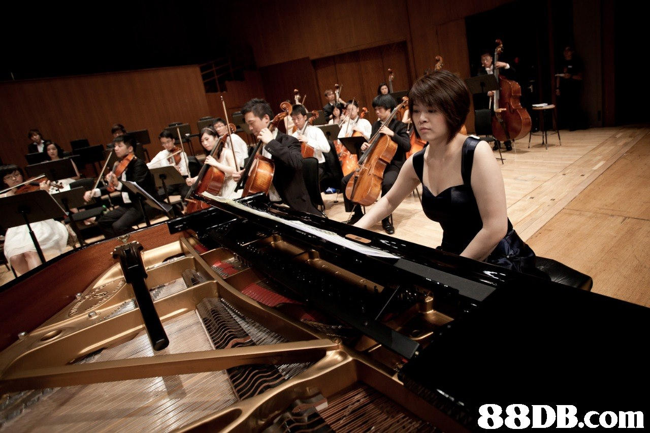 piano,pianist,keyboard,musician,classical music