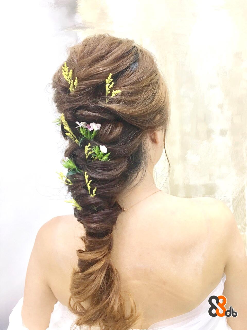 hair,hairstyle,headpiece,hair accessory,long hair