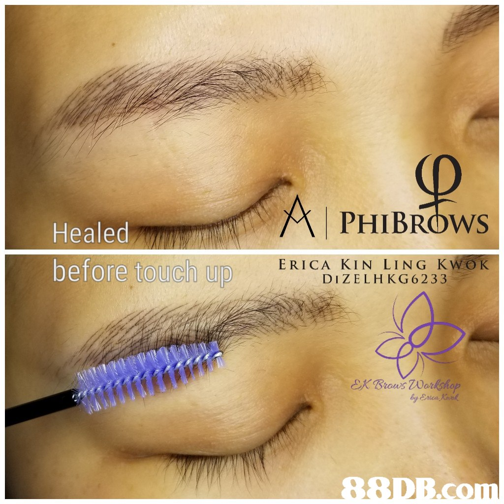PHIBROWs Healed before touch up ERICA KIN LING KWOK DIZELH KG6233 Erica   eyebrow,eyelash,eye shadow,eye,cosmetics