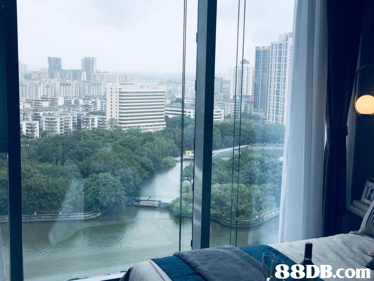 property,condominium,building,skyscraper,window