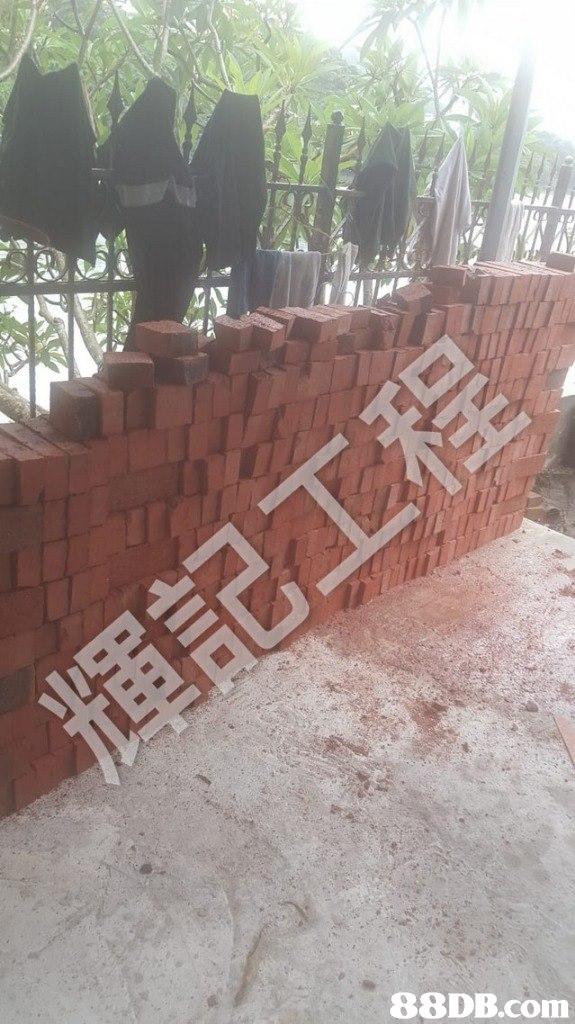wall,area,