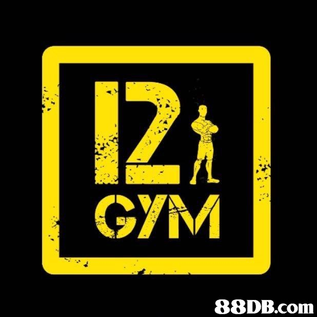 12 GYM 88DB.com  yellow