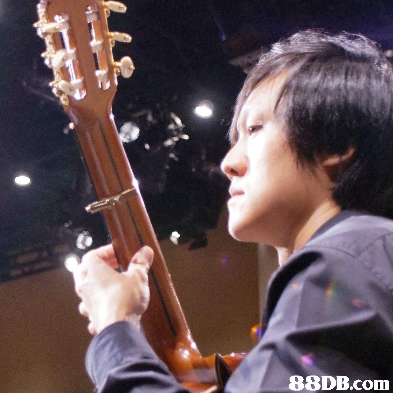 Musical instrument,String instrument,String instrument,Music,Plucked string instruments
