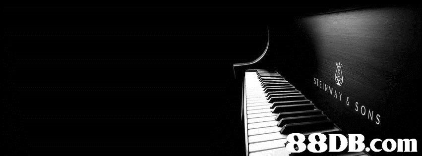 SENWAY &SONS 88DB.com  piano