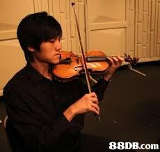 Violist,Violinist,Violin,Viola,Musical instrument