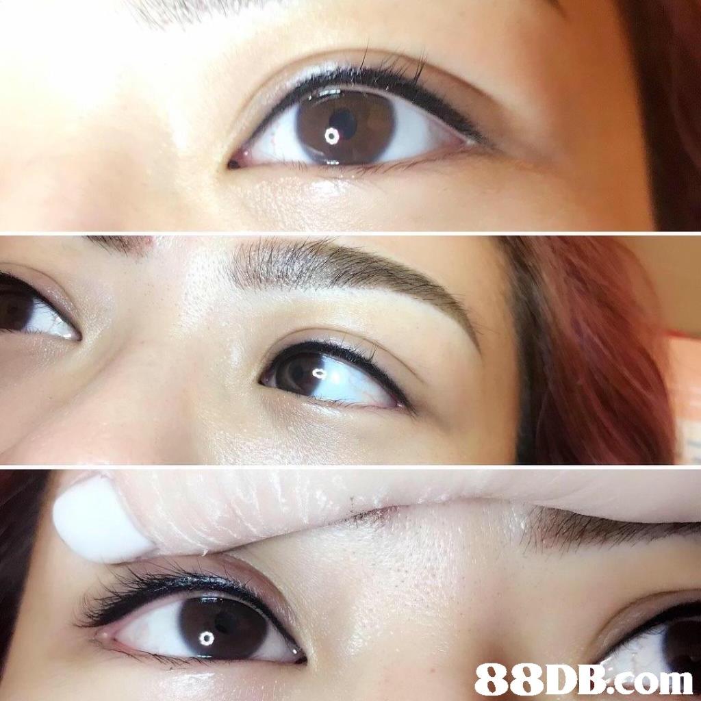 eyebrow,eyelash,eye shadow,eye,forehead