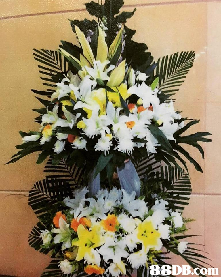Flower,Floristry,Flower Arranging,Bouquet,Floral design