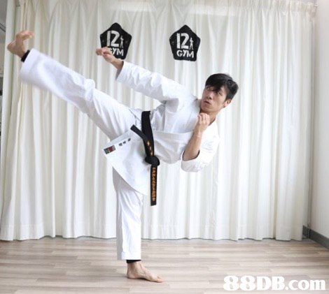 12 GTM ODB.com  Martial arts uniform,Karate,Taekwondo,Martial arts,Kick