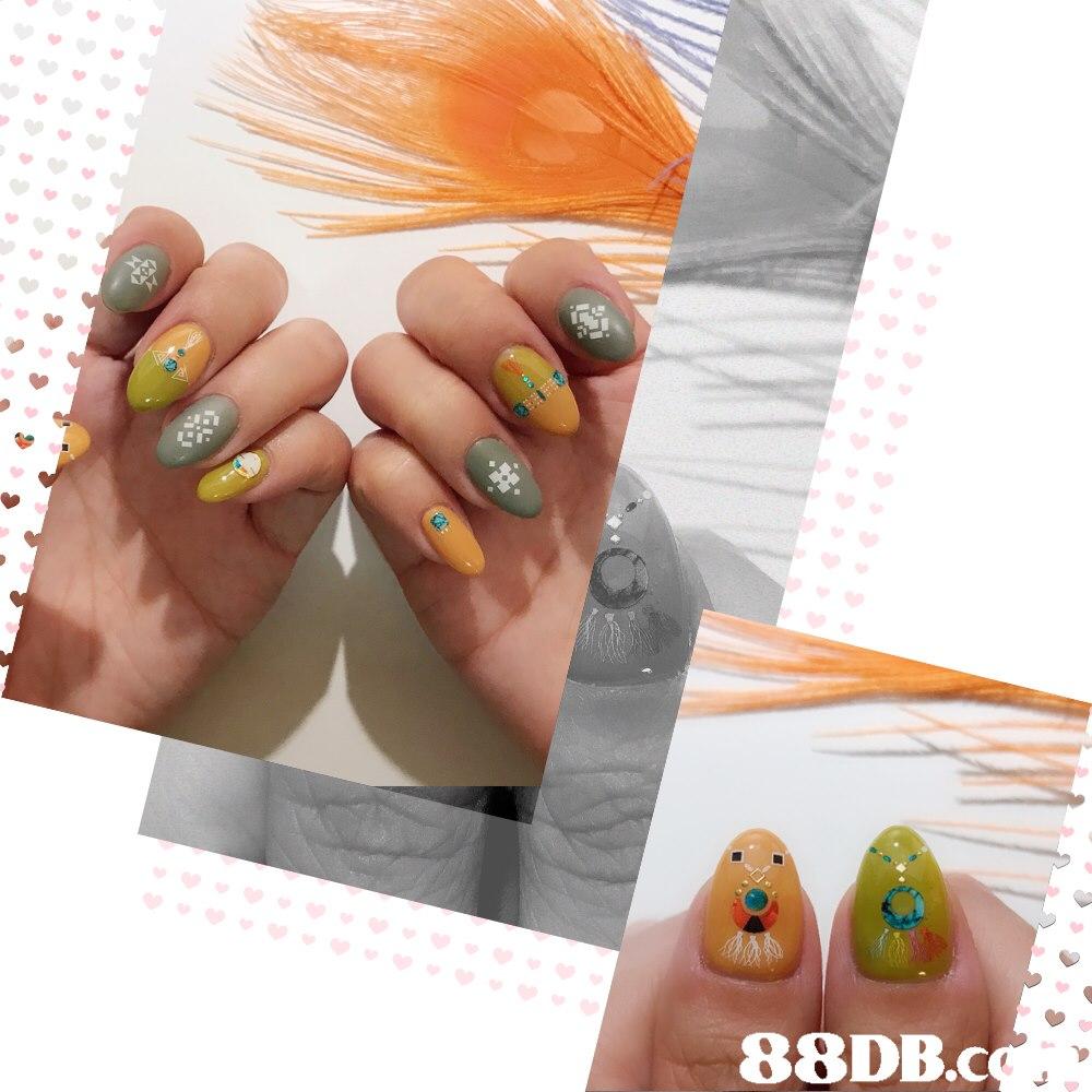 88DB.c  Nail,Manicure,Nail polish,Nail care,Cosmetics