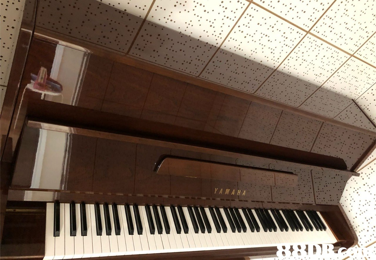 YAMAHA  piano,musical instrument,keyboard,digital piano,player piano