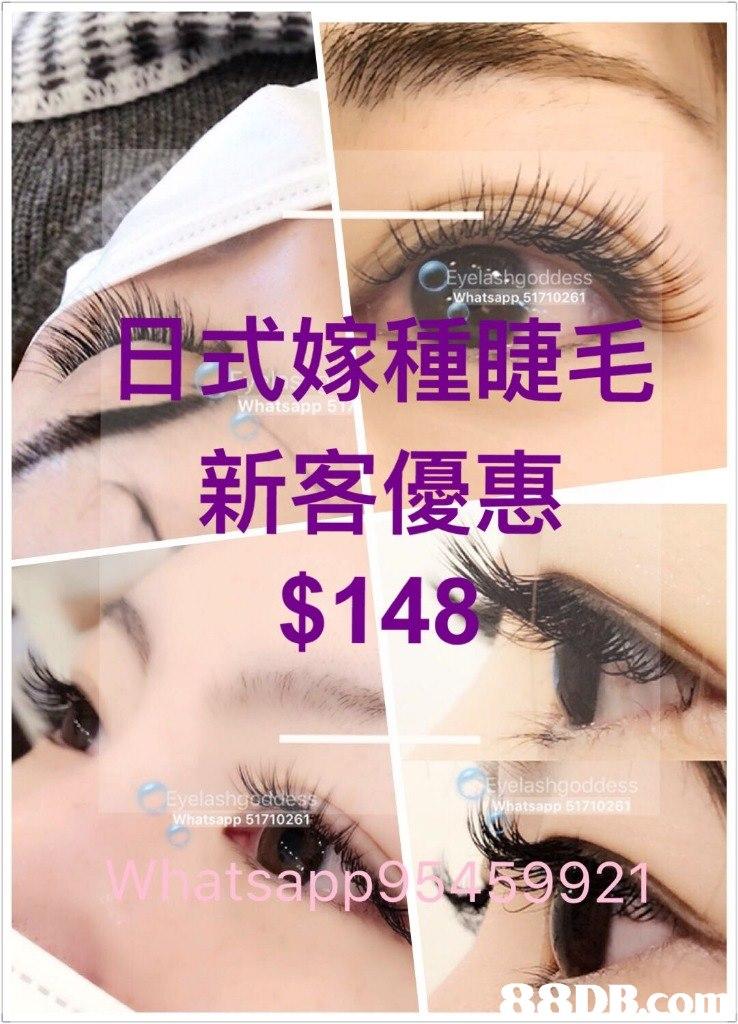 -Whatsapp,51710261 日式嫁種睫毛 新客優惠 $148 las ats as 921  eyebrow,eyelash,eye shadow,cosmetics,purple