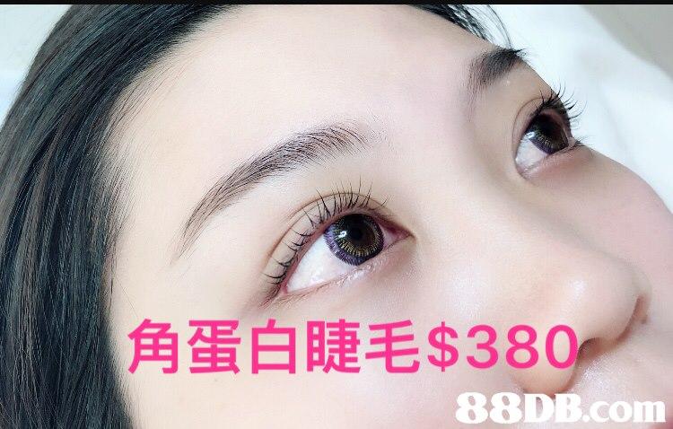 角蛋白睫毛$380   eyebrow,eyelash,skin,nose,cheek