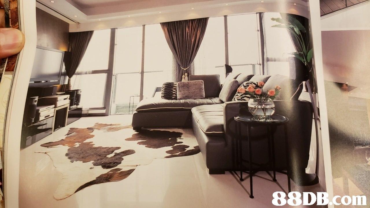 room,property,interior design,furniture,home