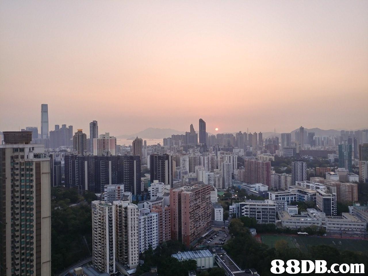 metropolitan area,city,urban area,cityscape,skyline