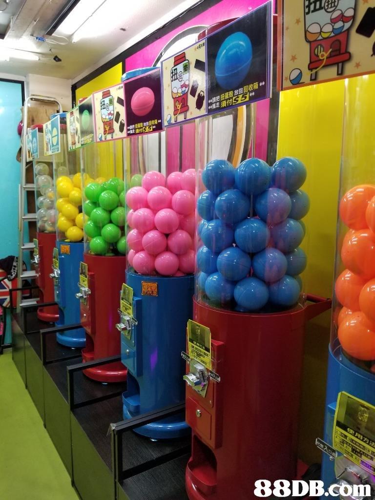 放回回收箱林   balloon,toy,product,party supply