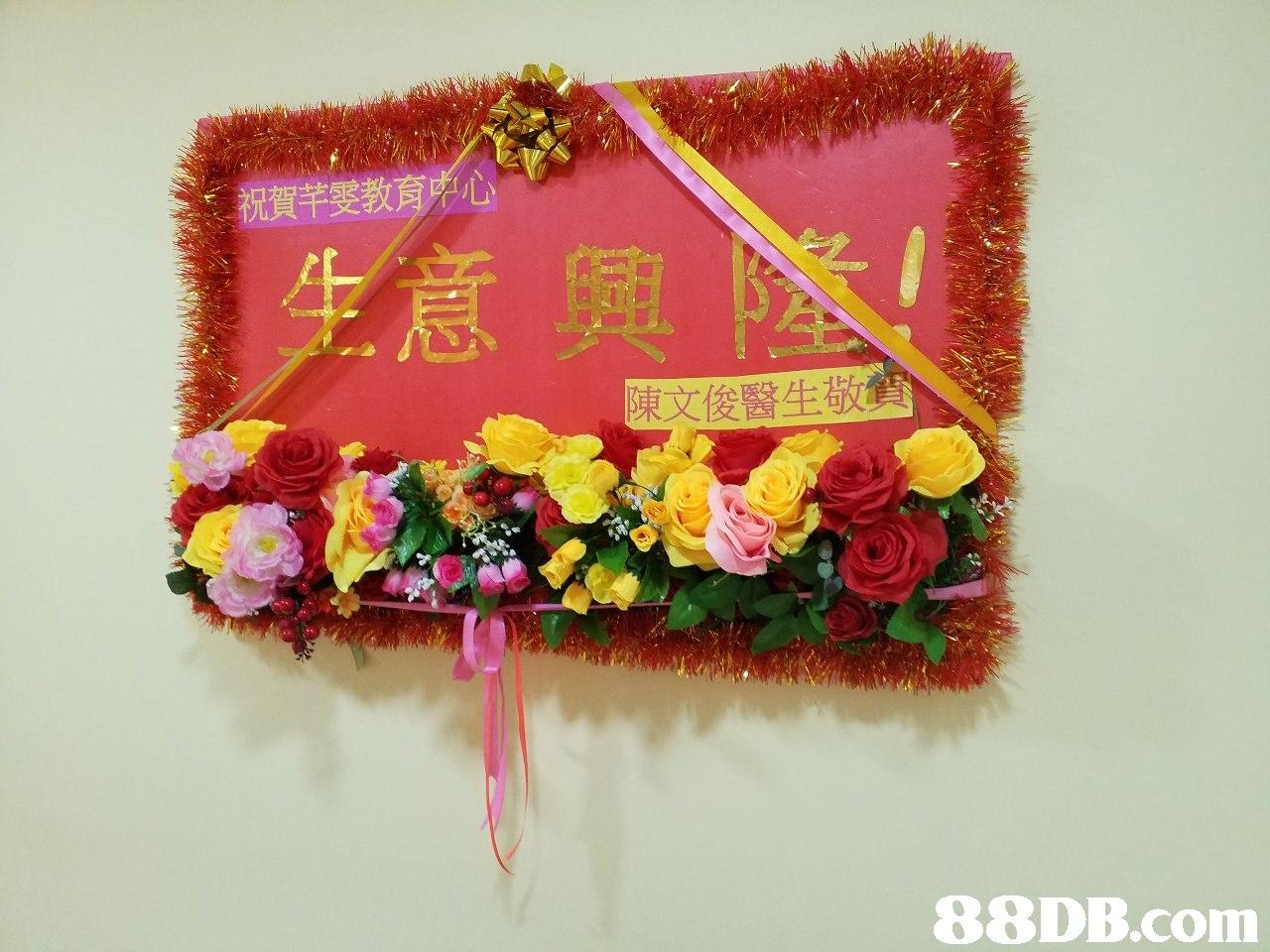 陳文俊醫生敬 88DB.com  flower