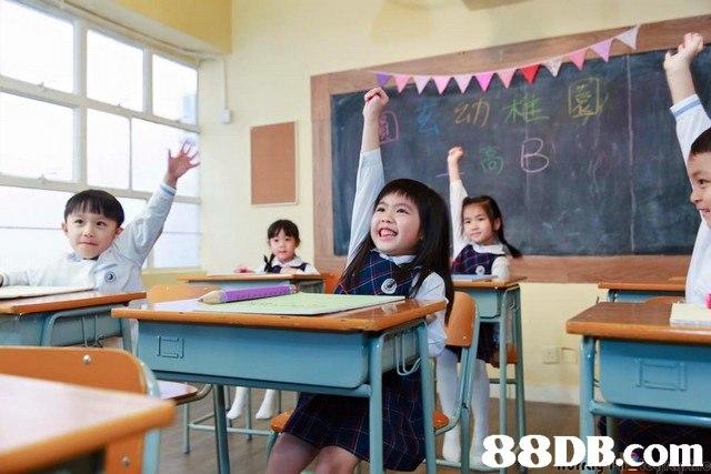 88DB.com  education