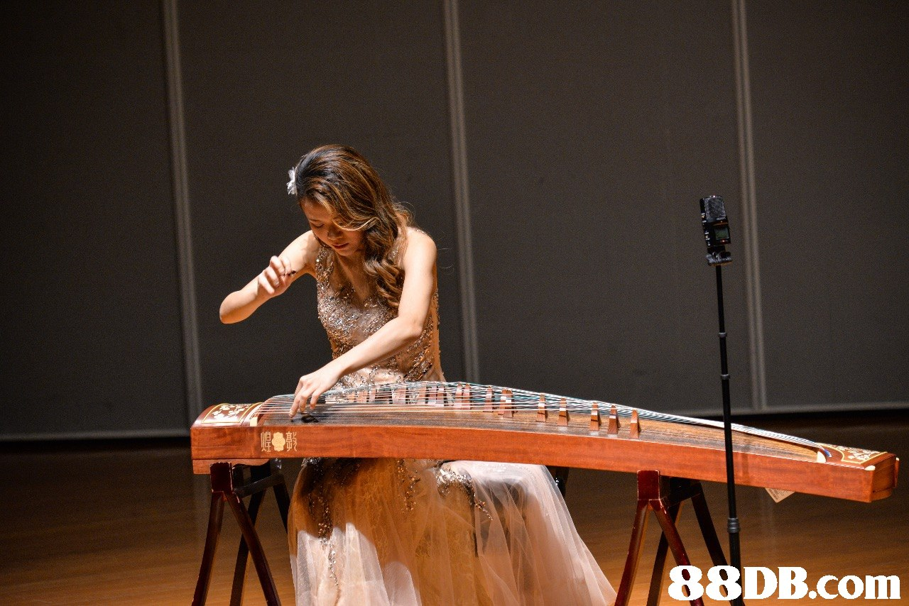 musical instrument,folk instrument,traditional chinese musical instruments,plucked string instruments,string instrument