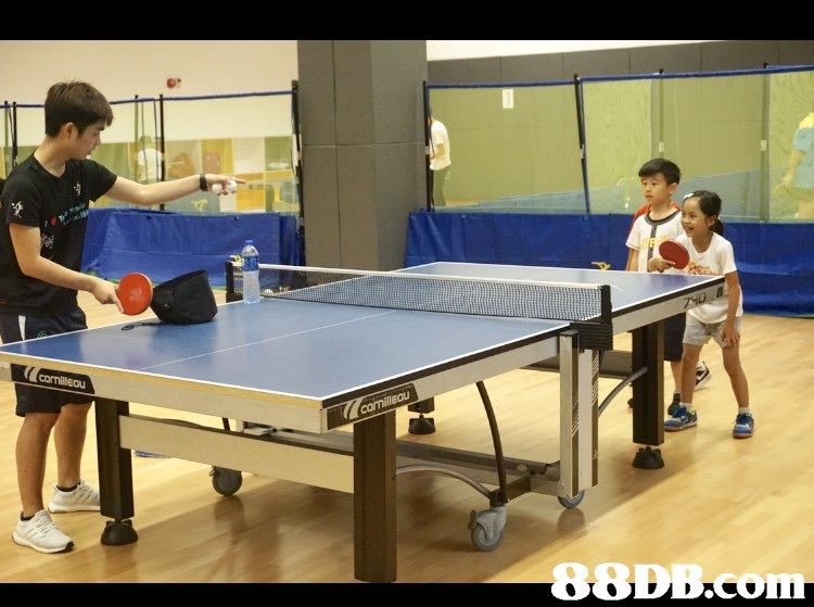 or   table tennis,racquet sport,sports,table tennis racket,table