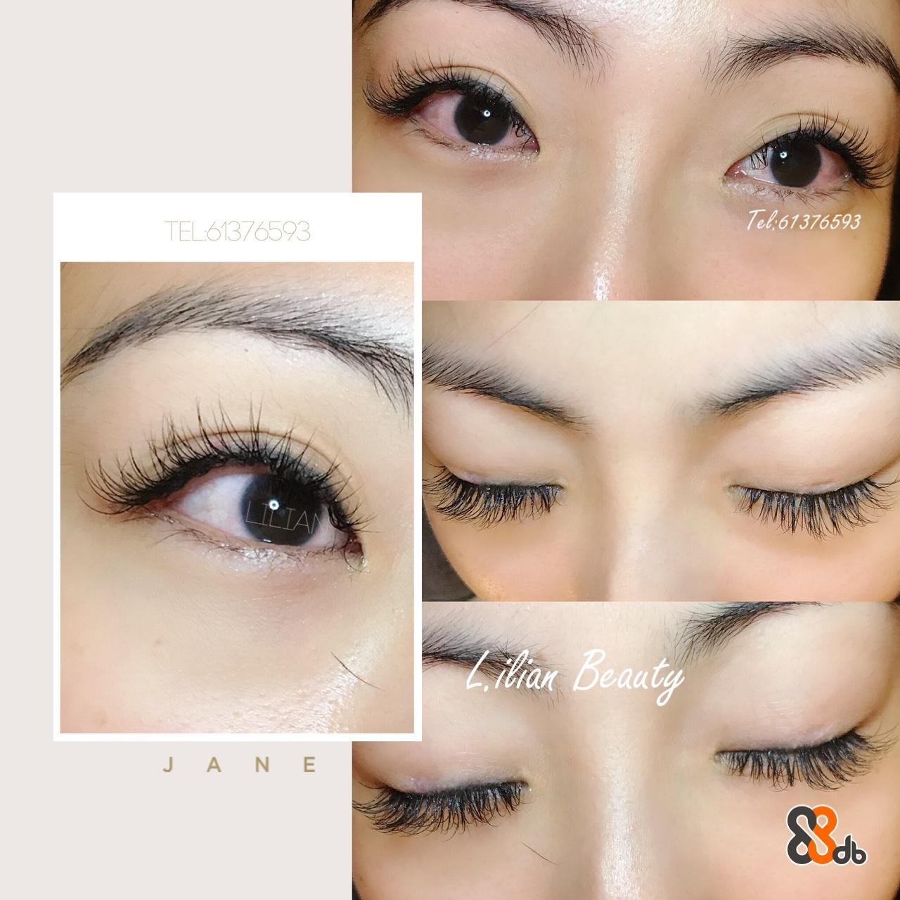 TEL 61376593 Tel61376593 J A NE  eyebrow